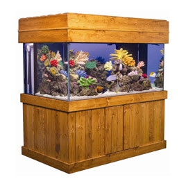 Aquariums By Size